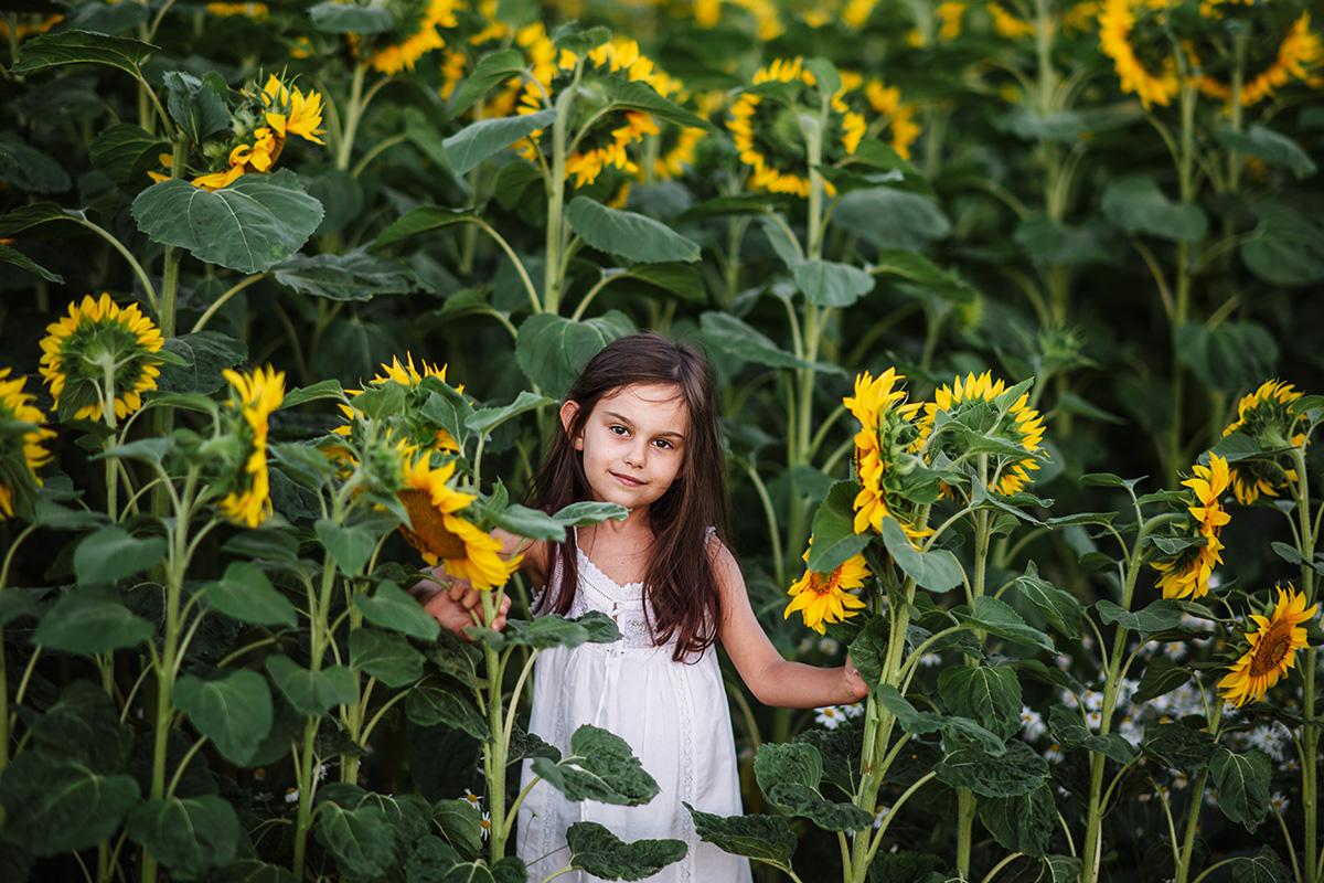 dziewczynka w słonecznikach